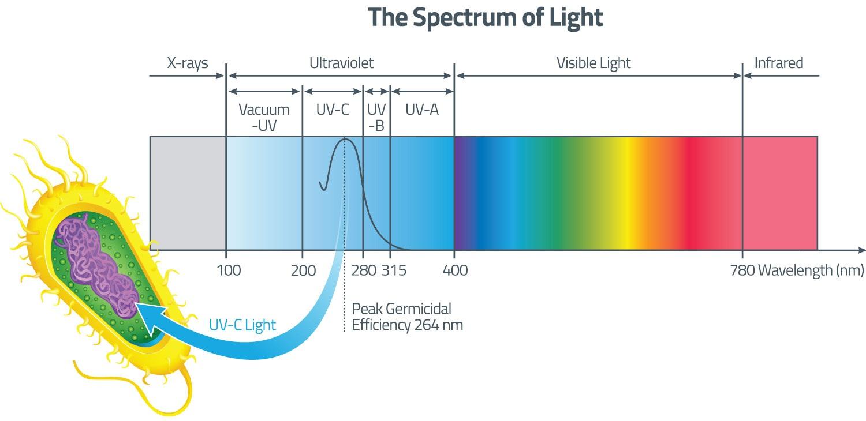 uv-light-spectrum-dia